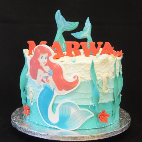 XL - FROSTED LITTLE MERMAID
