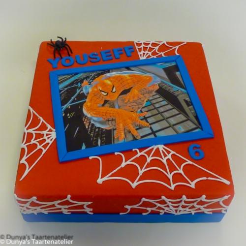 Spiderman  met webben
